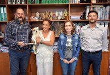 Protocolo de cooperação com a Associação dos Amigos dos Animais de Albergaria-a-Velha.