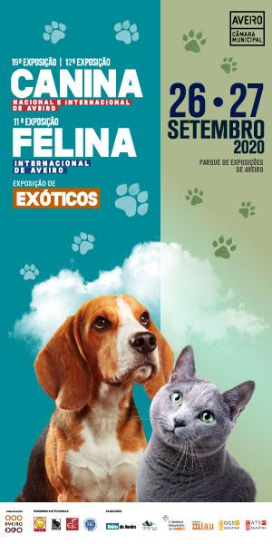 Expo Canina 300X600